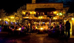 Best Wineries in San Diego, Limousine, Transportation, Sedan, SUV, Charter, Shuttle, Wine Cabernet, Sauvignon, Chardonnay, Merlot, Zinfandel, Party Bus, North County, Escondido, Temecula, Bernardo Winery