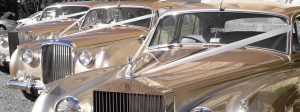 Hillcrest Classic Vintage Car Rental Services, Antique, Rolls Royce, Bentley, White, Wedding Getaway