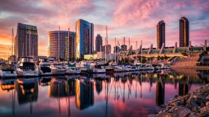 San Diego Tours Limousine Bus Rental Services, City, Downtown, Old Town, Beach, Helicopter, Boat, Seal, Whale, Brewery, Wine, Winery