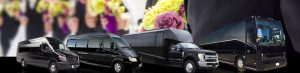 San Diego Wedding Bus Shuttle Rental Services, White Limo, Limousine, Luxury Sedan, SUV, White Cadillac Escalade, Party Bus, Charter, Bride, Groom, Classic, Vintage, Antique, White Rolls Royce Bentley, One Way