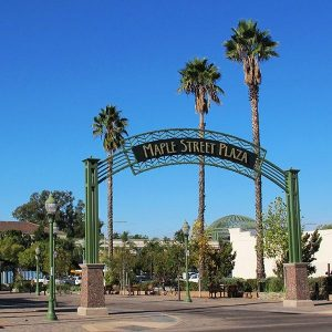 Top Things to do in Escondido, San Diego Zoo Safari Park, Welk Resorts, Stone Brewing, Bates Nut Farm, Rip Current Brewing, Hungry Hawk Vineyards & Winery, BK Cellars Urban Winery, Port Brewing Company, San Diego Gaslamp Quarter, Limo, Party Bus, Shuttle, Charter, Sedan, SUV, Brewery Tour, Wine Tasting